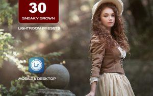 30 پریست لایت روم حرفه ای رنگی تم کاراملی Sneaky Brown Lightroom Presets