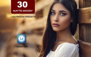 30 پریست لایت روم و 10 براش لایت روم Matte Moody Presets Lightroom