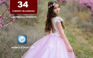 34 پریست لایت روم بهار و Camera Raw و اکشن کمرا راو فتوشاپ Cherry Blossom Lightroom Presets